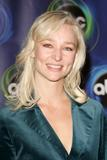Kari Matchett - 2006 ABC TCA Winter Press Tour Party